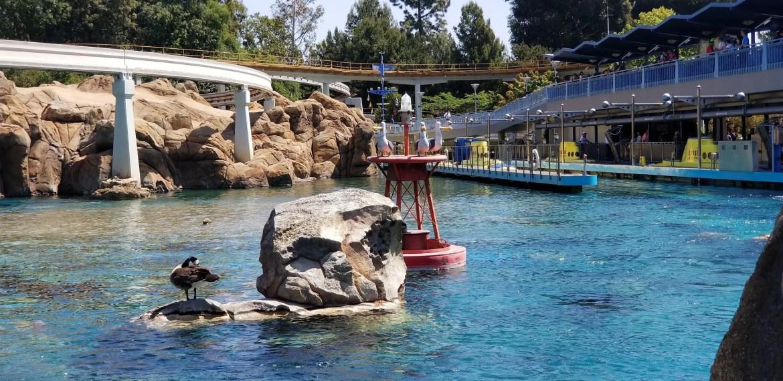 Finding Nemo Submarine Voyage reopening in Disneyland