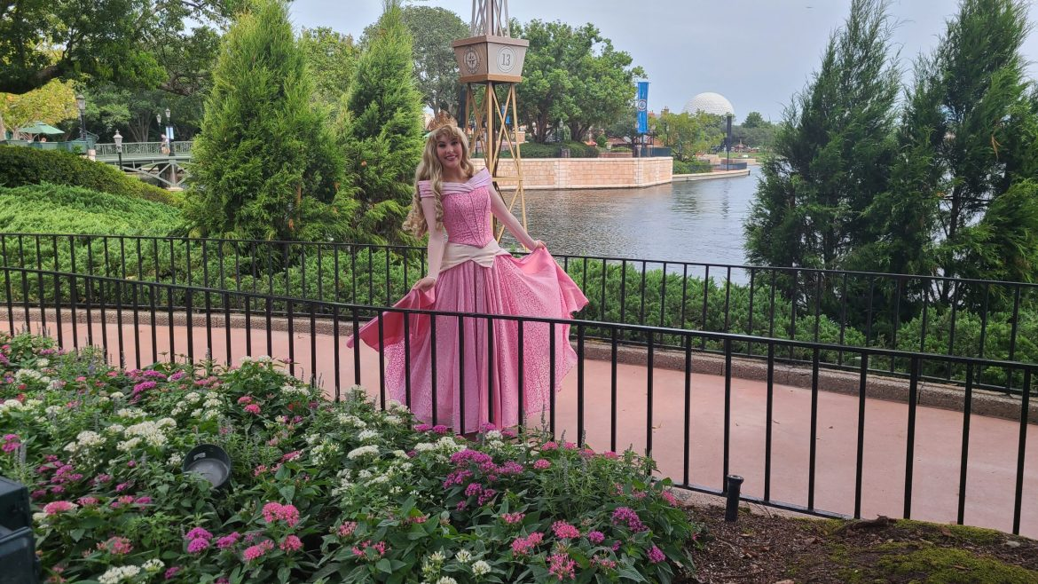 You can see all the Disney Princesses in various locations in Epcot