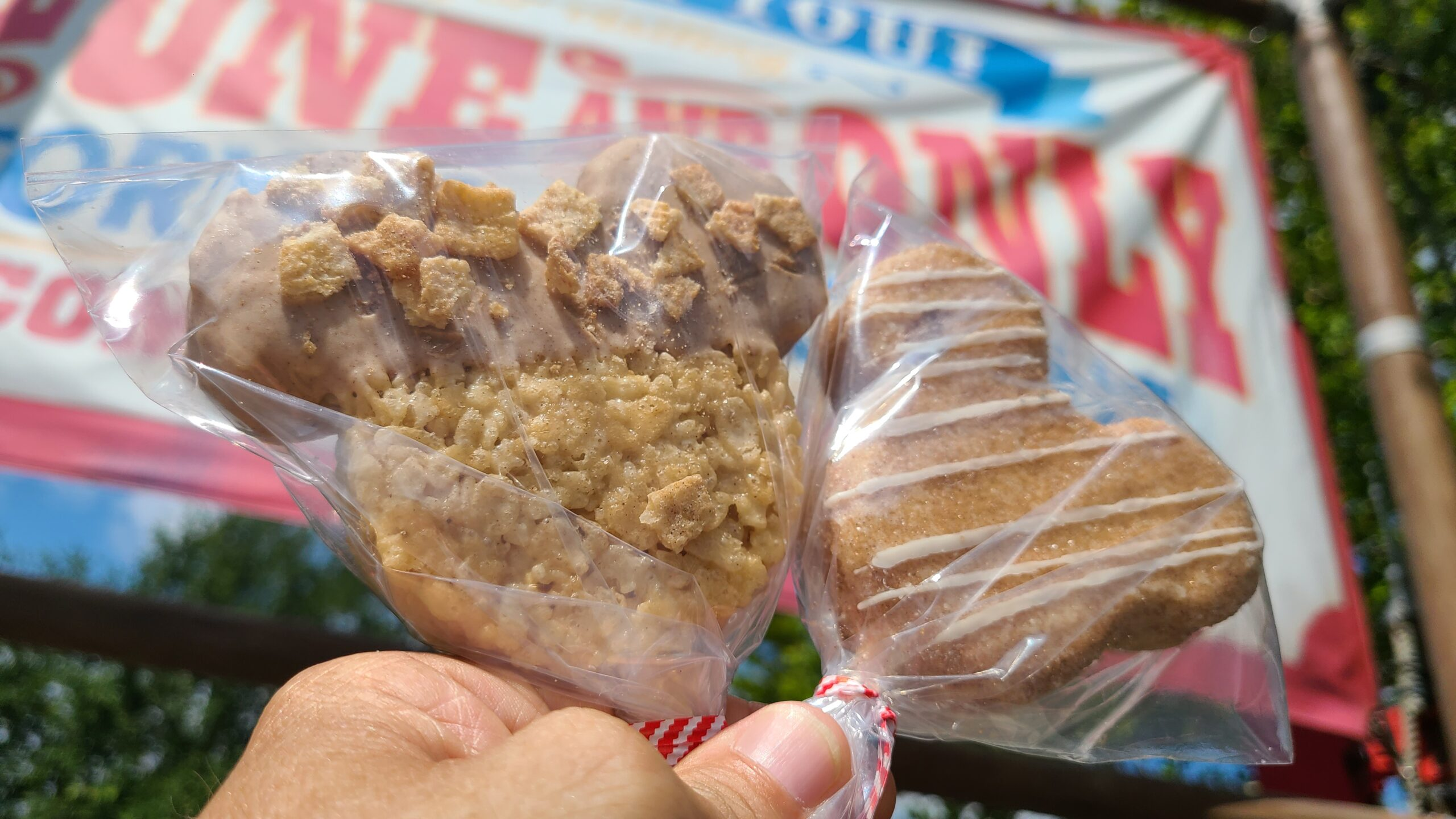 We are in love with these new Churro Tasty Treats at Disney World 1