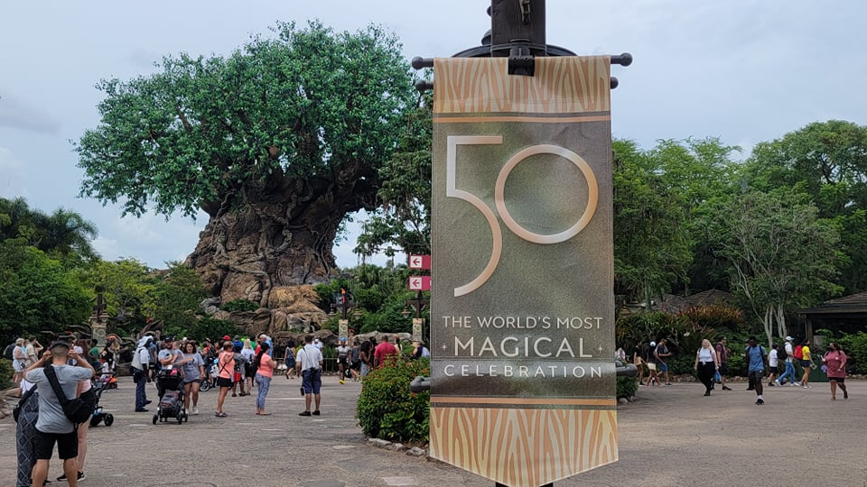 50th Anniversary Banners Now on Display in Disney's Animal Kingdom 2