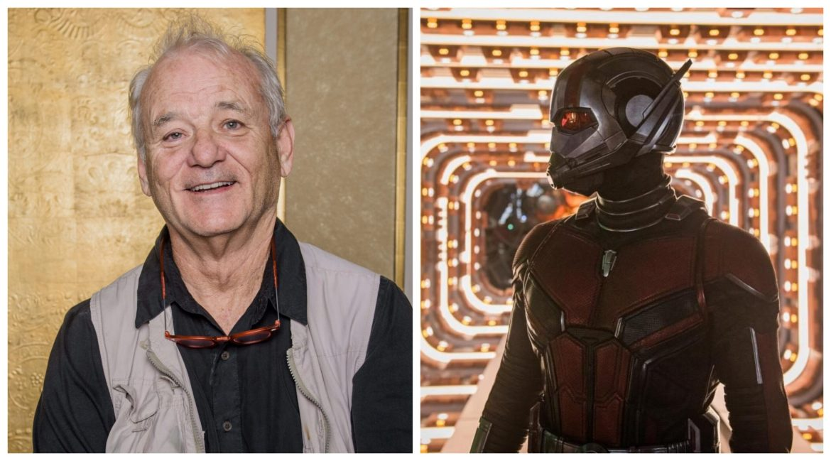 Bill Murray Joins the Cast of 'Ant-Man and the Wasp: Quantumania'
