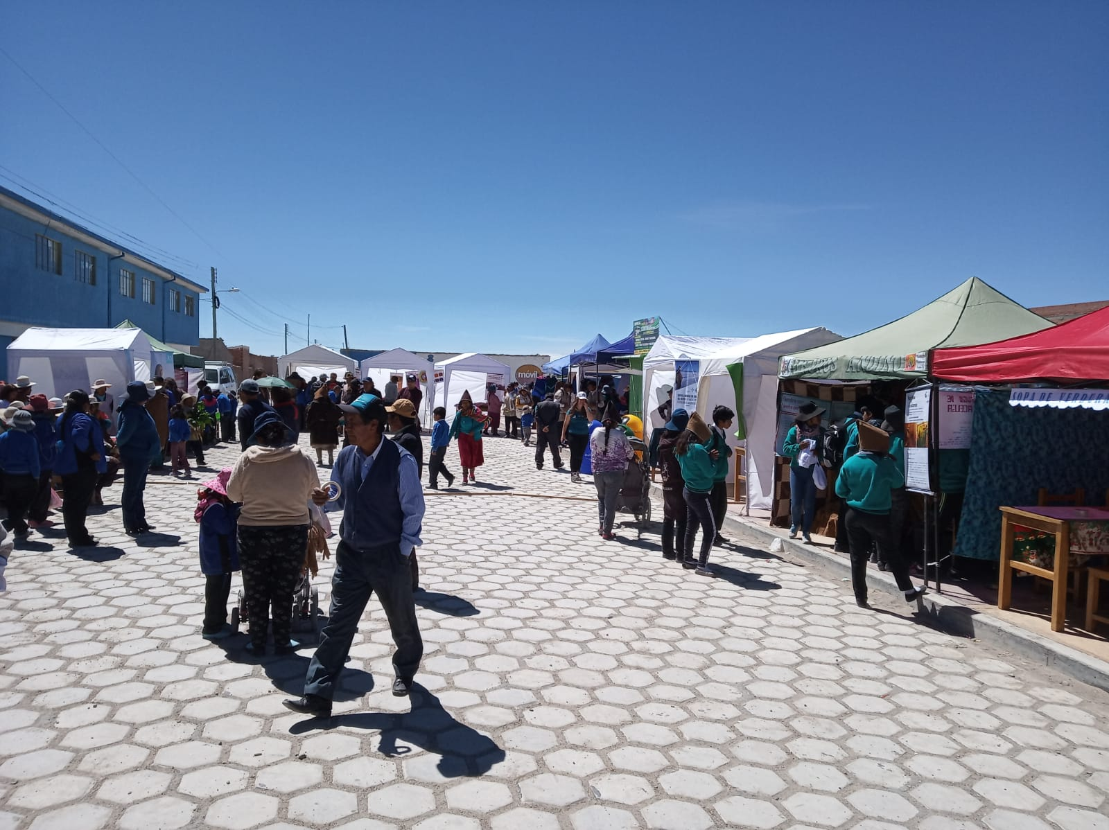 Feria Chipaya: logros y desafíos del proyecto Memoria del Agua y del Viento