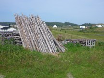Wood stacked for drying