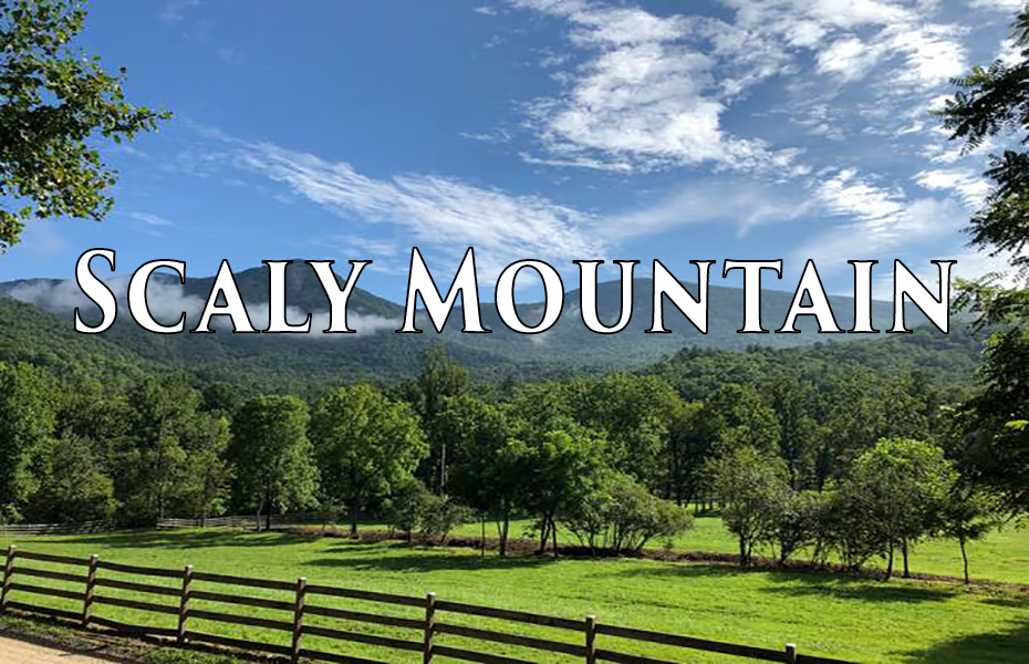 Sell and Search Homes, Houses, Land, and Commercial Real Estate for Sale Scaly Mountain NC 28775 on ChipDurpo.com, Realtor Chip Durpo, Broker/Agent Scaly Mountain NC 28775, Sell this House, Market your Home