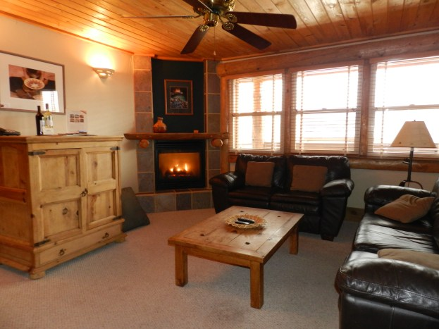 201 Two Bedroom A beautiful wooden themed living room with a fireplace for cold weather conditions