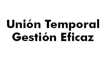 UNION TEMPORAL GESTION EFICAZ