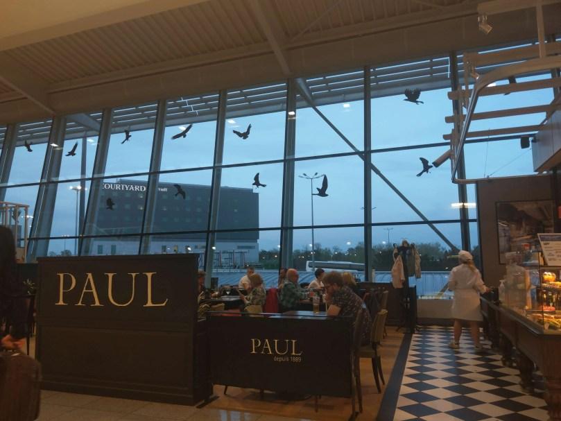 華沙機場的預防鳥類撞擊窗貼