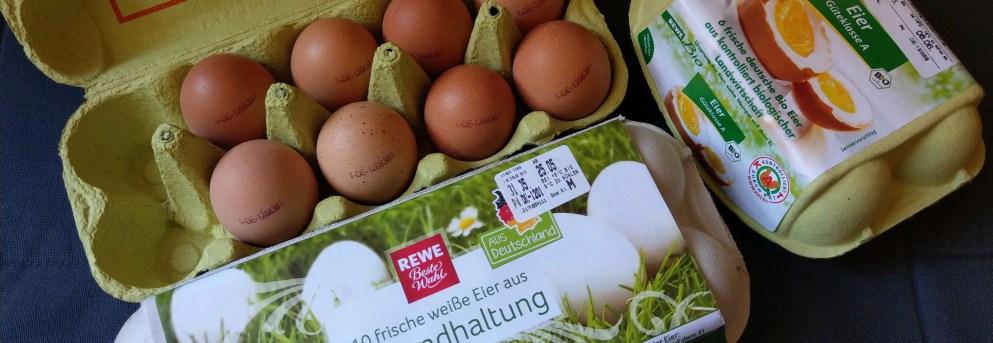 雞蛋密碼:破譯蛋雞媽媽的快樂或悲傷