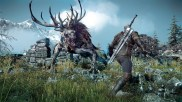 The Witcher 3 03