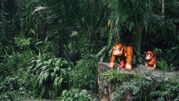 Virtual&Real_Jungle