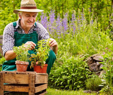 How to Keep Your Garden Weed Free: Expert Gardening Tips