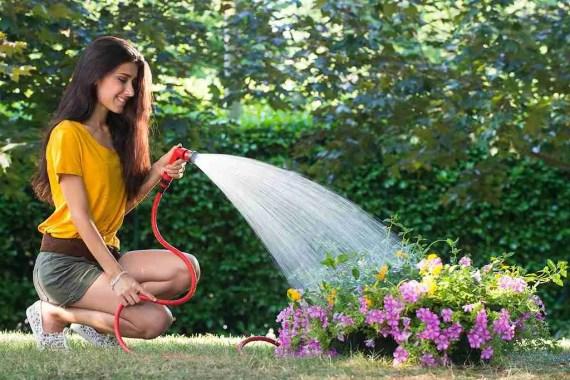 The Best Way to Water Garden