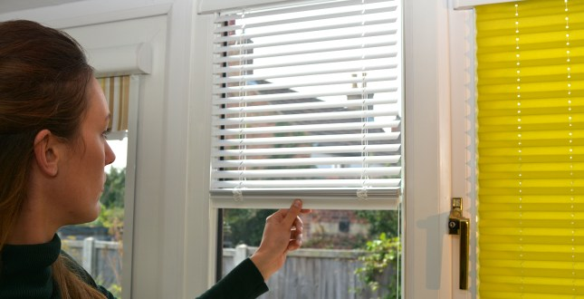 How Much Does It Cost to Install Window Blinds