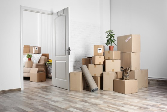 Key Things to Take Care of When Moving into a New Home