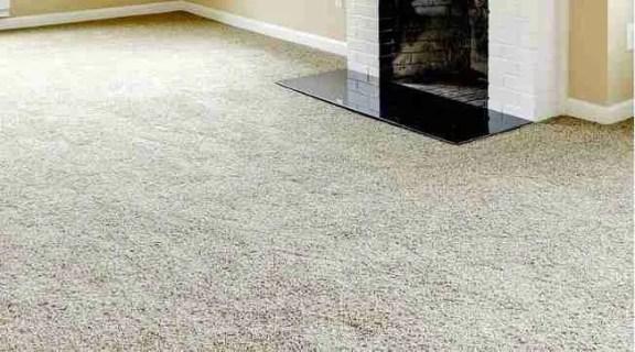Ppokture 1 buying carpet