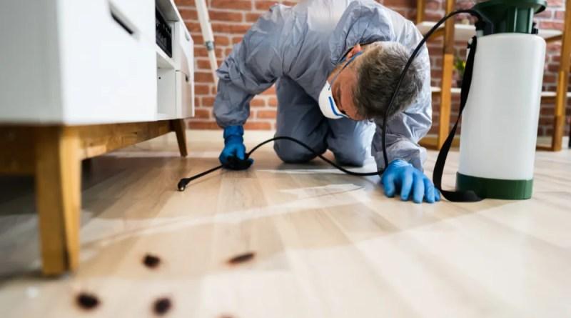 vfrddf Eliminating Pests