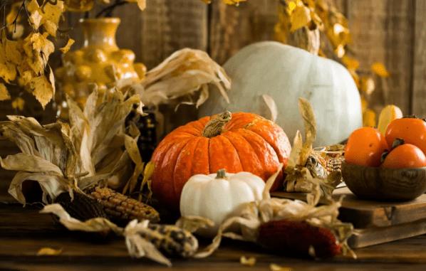 Fall Activities for a Festive Season