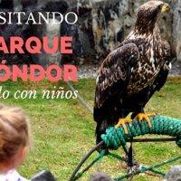 El Parque del Cóndor en Otavalo