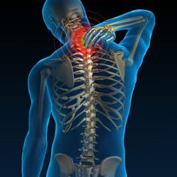Upper Neck Pain on the Spine