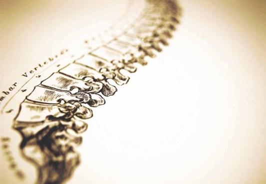 chiropractor las vegas