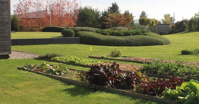 Jardin Contemporain Graminee Graviers Dalle Beton Terrasse