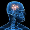 deep brain activity