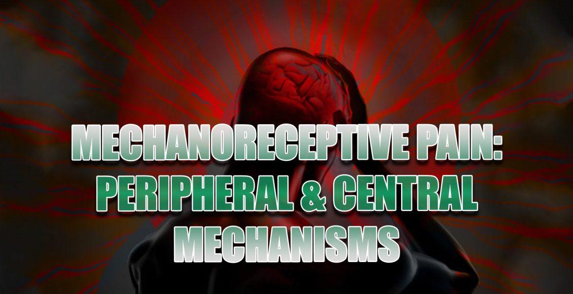 mechanoreceptive el paso tx.