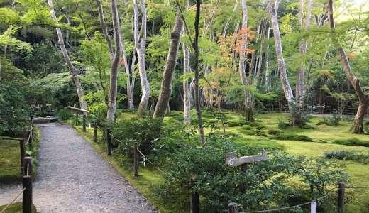 【京都観光】嵐山観光途中に立ち寄れる祇王寺はとても静かで落ち着く寺