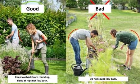 gardening form