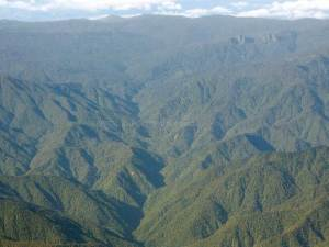 National Park La Amistad Costa Rica