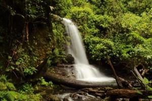 Kilo Waterfalls