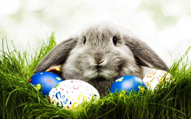 Easter Gifts - The Easter Bunny Doesn't Have Much to Do With Them
