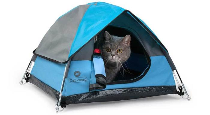 Cat Tents - A Great Gift Idea