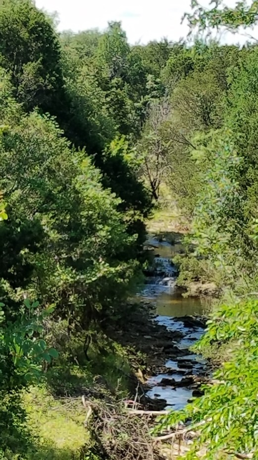 Creeks and rivers serve as Bosque County's beautiful backdrop.