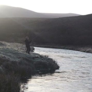 We can offer some of Scotland finest salmon rivers and trout lochs where you will accompanied by guide. Email for more info on lochs and rivers we provide ...