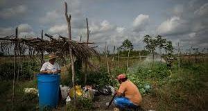 Más del 30.29 por ciento de la población dominicana vive en altos niveles vulnerabilidad