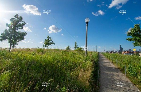Skyline View From The Henry C Palmisano Nature Park Bridgeport Chicago BP-030