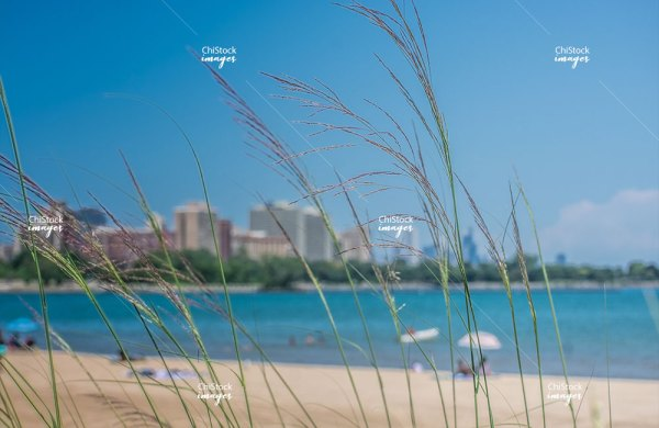 Jackson Park Woodlawn 63rd Street Beach With Hyde Park and Downtown Chicago in The Background