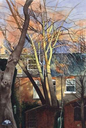 Chiswick in Pictures Liz Butler Winter in a West London Garden