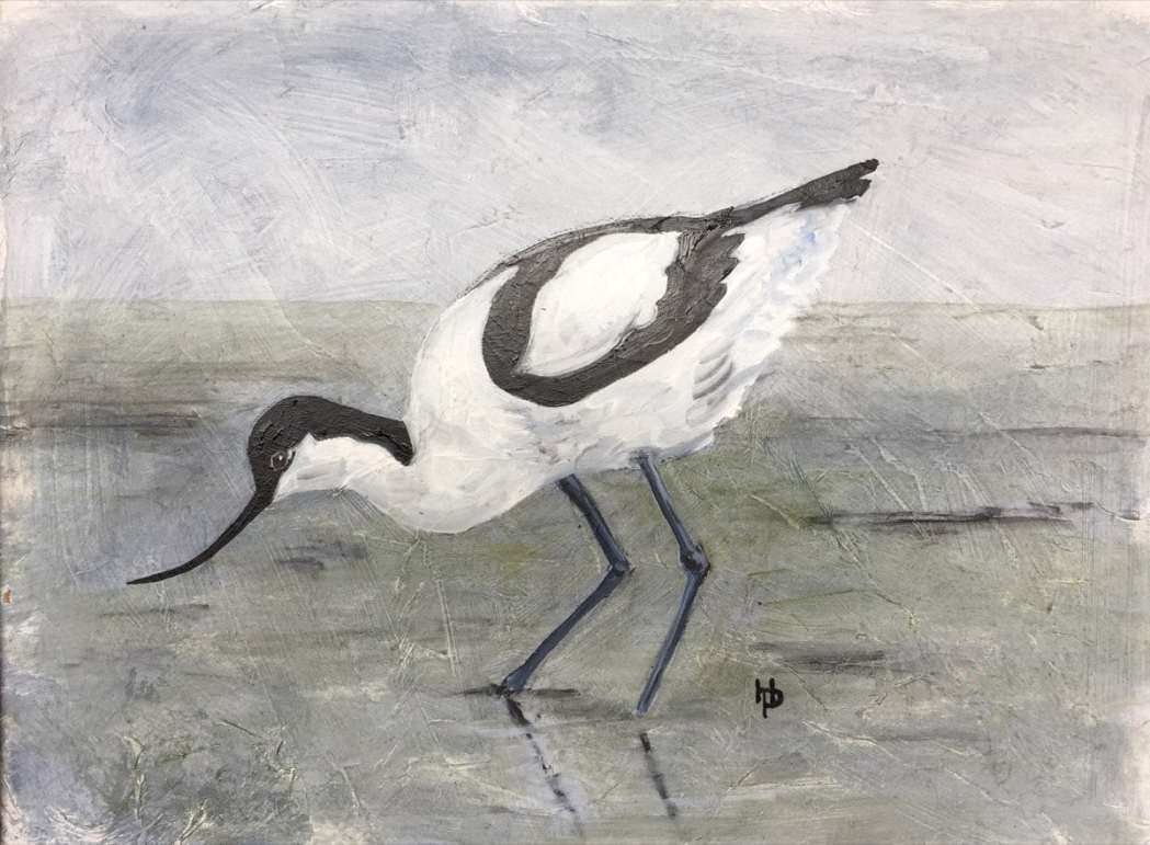 2017 Artists at Home Henrietta Parsons - Avocet