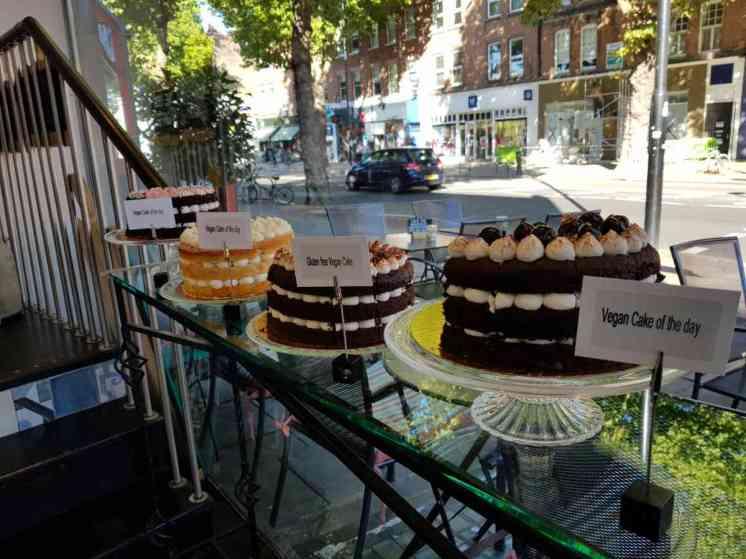 Chateau cakes 6