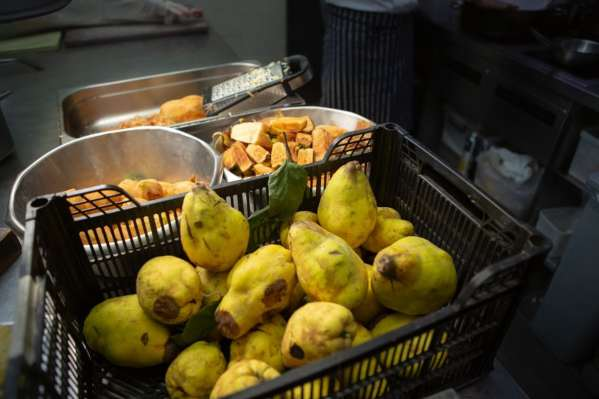 Cooking quinces