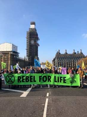 Extinction Rebellion November 2018 - 1 web