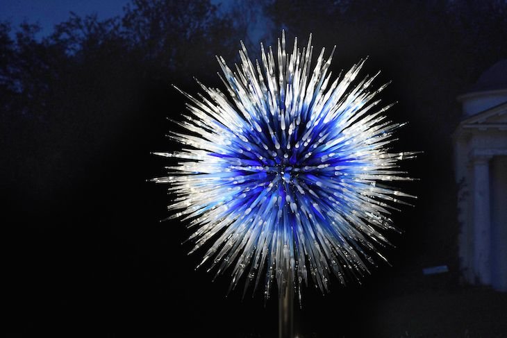 Sapphire-Star-by-Dale-Chihuly