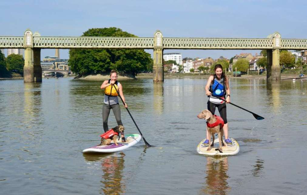 10-off-Paddleboarding-lessons-and-classes