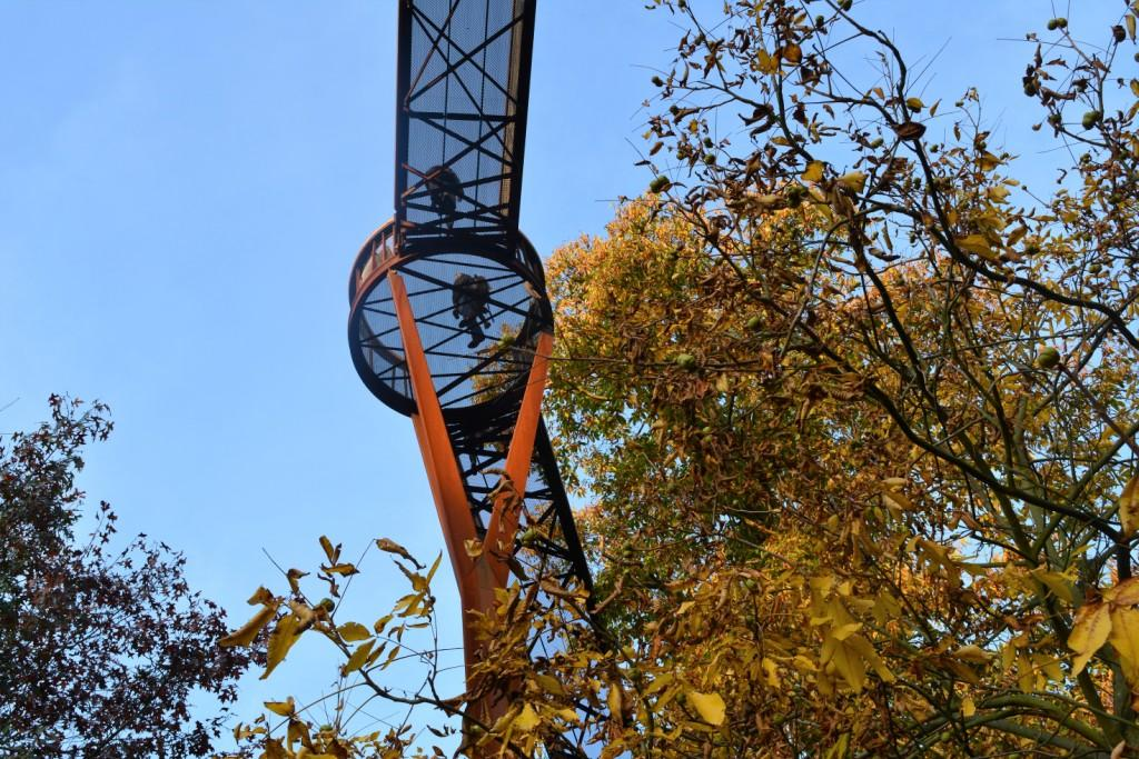 Treetop walkway at Kew - Mando Mendolicchio