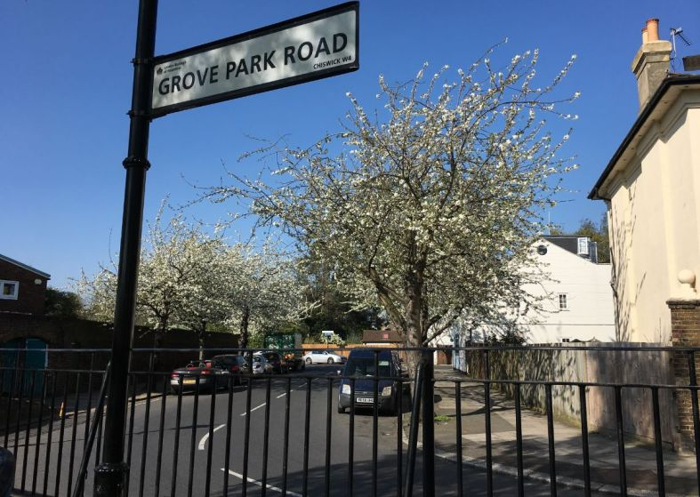 Grove Park Rd