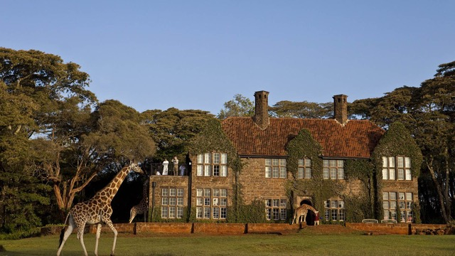 giraffe-manor=402673-300