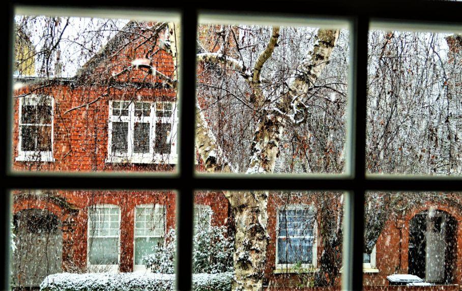 Bedford Park 2 Donna Schoenherr