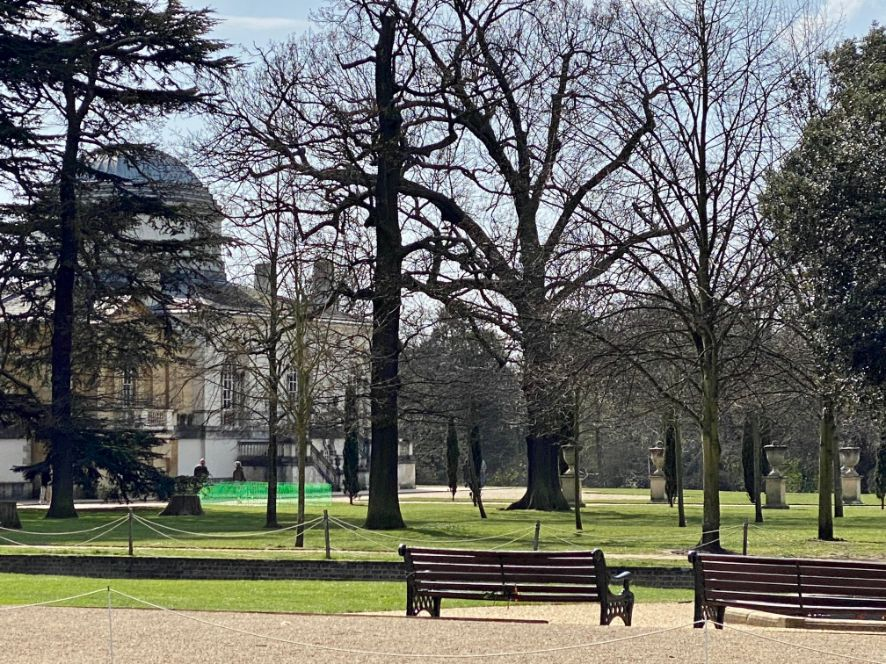 Trees in Chiswick House Gardens in Spring - Jennifer Griffiths